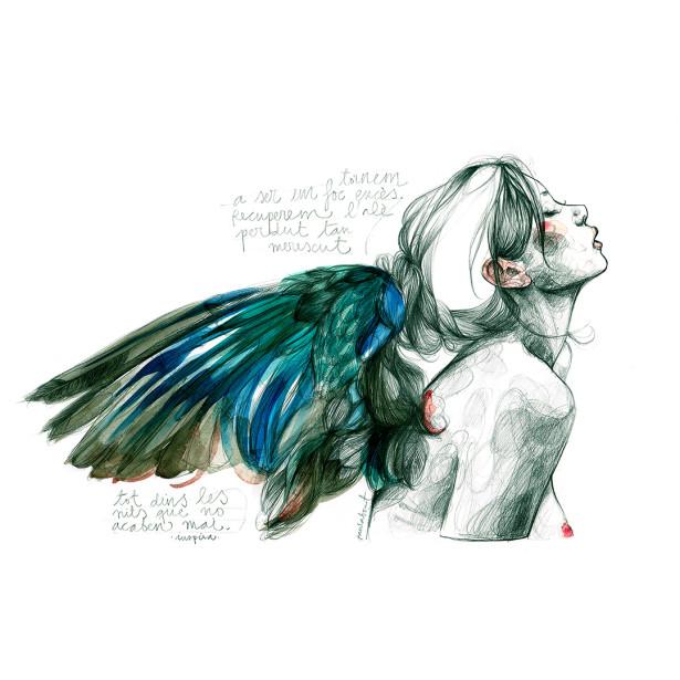 Ilustração - Bonet