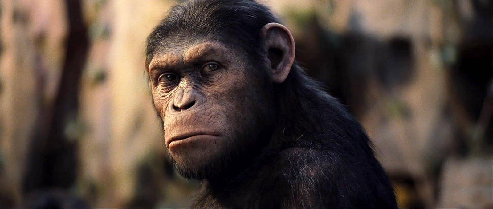 planeta-dos-macacos-cesar-capa